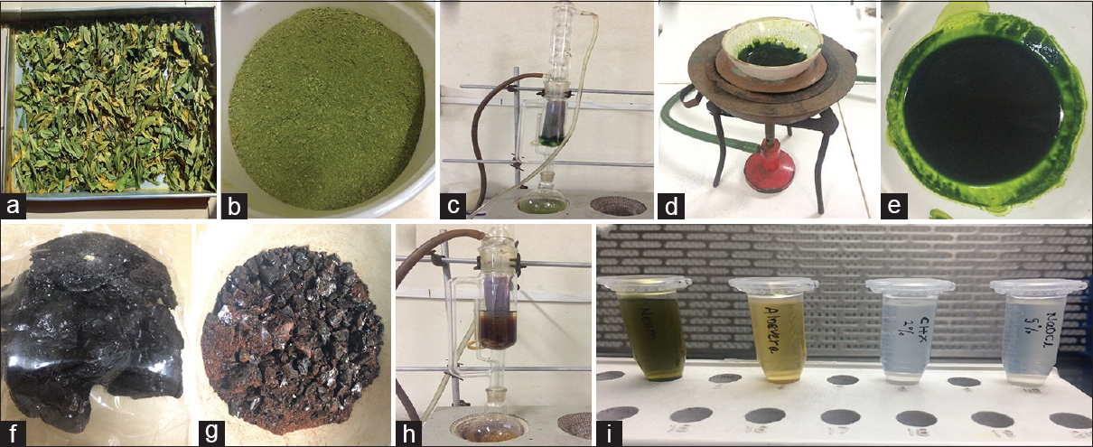 Figure 1: (a and b) Fresh neem leaves dried and powdered, (c) soxhlet apparatus, (d) evaporation of alcohol residues from extract, (e) pure neem extract, (f and g) dried <i>Aloe vera</i> stones, (h) soxhlet apparatus, and (i) extracts mixed with dimethyl sulfoxide