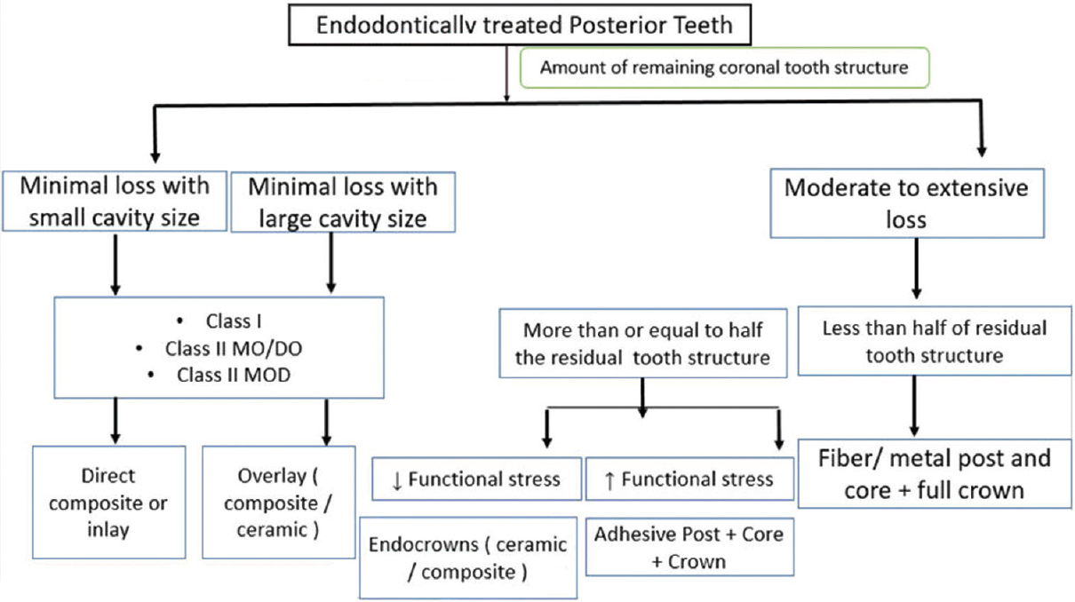 Figure 3: Clinical guidelines for restoring endodontically treated posterior teeth